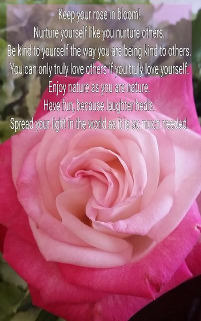 #Naturetalk Keep your rose in bloom uitjebewust